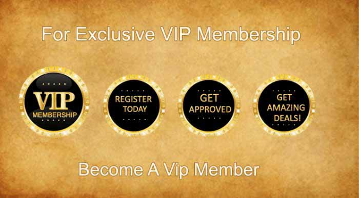 Artoy Wholesale Toy VIP Membership Info